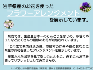 展示内容の紹介_01